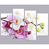 HOMEDCR Murales 4 Paneles Pintura Impresa Rosa Phalaenopsis Mariposa Orquídea Flor Lienzo...