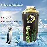 lingzhuo-shop 300ml climatisation de Voiture antigel réfrigérateur Filtre Remplacement réfrigérant réfrigérant à Long Terme concentré de Protection de l'environnement de Voiture