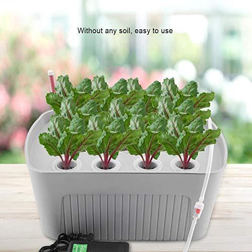 Zerodis Indoor Hydroponics Grower Kit 11 Löcher Hydroponik System Pflanze Blume Pflanzbehälter Tiefwasser Soilless Kultur Box für Home Office Küche(Grau) - 4