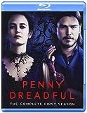 Penny Dreadful: Season One [Edizione: Francia]