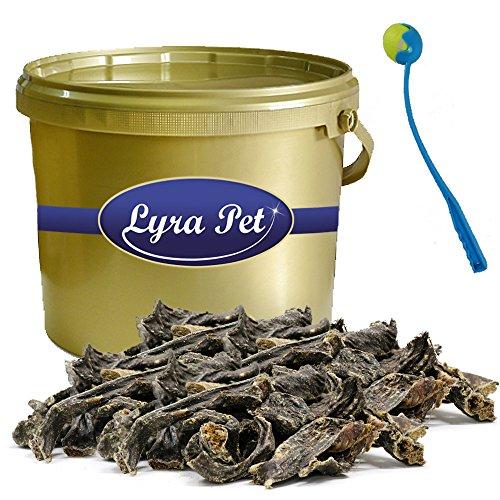 Lyra Pet 2 kg Rinderherz Dog Premium Leckerli Snack im Eimer Gold + Ballschleuder