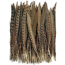 ERGEOB® Las plumas, plumas de faisán, 30-35cm / 12-14 pulgadas plumas de la cola de longitud faisán 10,30,50 pieza