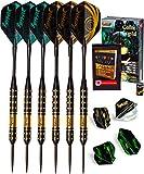 IgnatGames Set Freccette con Punta in Acciaio - 6 Darts Professionali 18g con Aste in Alluminio + 8 Alette in 2 Stili + Affilatore + Custodia