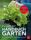 Das große BLV Handbuch Garten: Expertenwissen zu allen Fragen der Gartenpraxis - Wolfram Franke