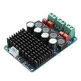 MYAMIA Tpa3116 Scheda Di Pbtl Dc 11-26V Dual Channel 2x100W Digitale Potenza Amplificatore 2 Chip Stereo Ad Alta Potenza Amplificatore Audio Board Ingresso 2.54 Mm 3 Spine