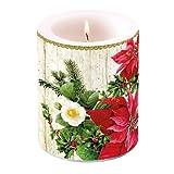 Ambiente Weihnachten Kerze Weihnachtsstern auf Holz 10,2cm Stumpenkerze 12cm hoch