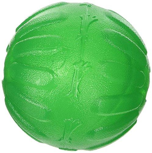StarMark Trattare Dispensing sfera Chew per i cani, Grande