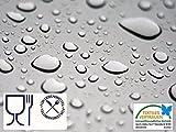 Transparente TISCHDECKE Tischfolie FOLIE Wachstuch, LFGB geprüft, Lebensmittelecht, 0,3 mm Stärke, Meterware, 140 cm Breit, Länge wählbar, Ertex (200 x 140 cm)