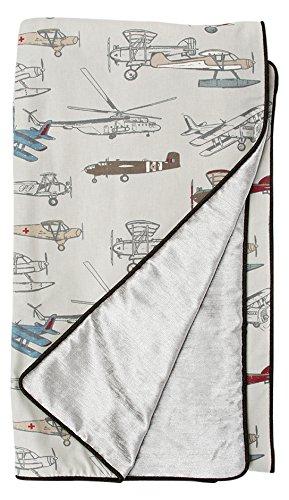 Glenna Jean fly-by Twin Bettdecke, silber Samt/Flugzeug, 157,5x 231,1cm