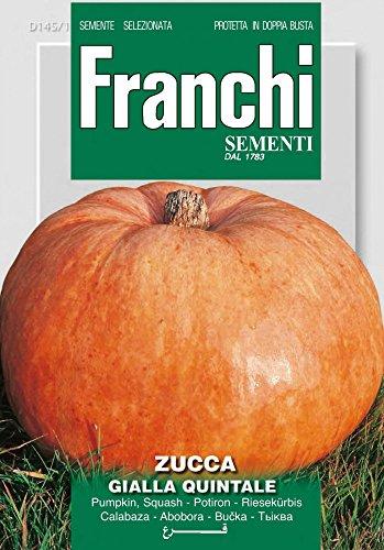 Kürbissamen - Riesenkürbis Gialla Quintale von Franchi Sementi