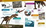 WAS IST WAS Band 15 Dinosaurier - Im Reich der Riesenechsen (WAS IST WAS Sachbuch, Band 15) - Manfred Baur