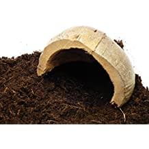 Tarantula Hide, Housing for Spider Enclosure, Terrarium, Vivarium, Tank, House (1 X MEDIUM)