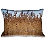 Best Home Fashion Designs Covers Sofa - Reed Pillow Case Cushion Cover Fashion Pattern Design Review