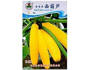 Oro allungata Zucca Banana melone Semi 10pcs