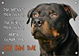 Rottweiler - Hundeschild aus Metall - rostfreies Warnschild in TOP Qualität, DIN A5