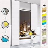 TODAMI Moderner Schiebevorhang, Flächenvorhang, Schiebegardine, einfach kürzbar, edle Leinenstruktur, blickdicht und lichtdurchlässig, 60x245 (BxH) - Weiß