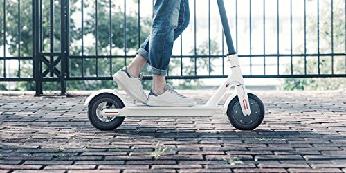 Mi Elektro Scooter