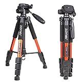 Zomei Q111 Professionelle Aluminium Kamera Stativ Camcorder Stand mit Pan Kopfplatte für DSLR Canon Nikon Sony DV Videoständer, Orange (Haushaltswaren)