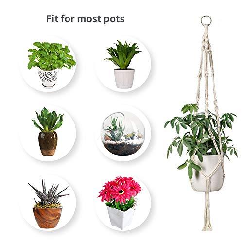 Zoom IMG-3 emooqi vasi sospesi per piante