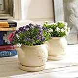 #5: Tayhaa Set of 2 Enchanting Purple & Green Artificial Plant with Pot