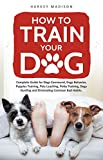 #1: How to Train Your Dog: Complete Guide for Dogs Command, Dogs Behavior, Puppies Training, Pets Leashing, Potty Training, Dogs Hunting and Eliminating Common Bad Habits