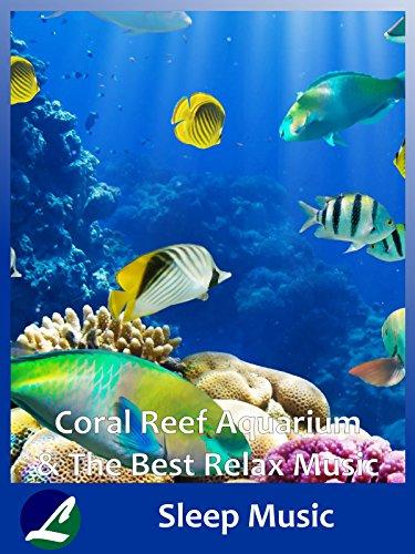 Johns Reef (Coral Reef Aquarium & The Best Relax Music - Sleep Music [OV])