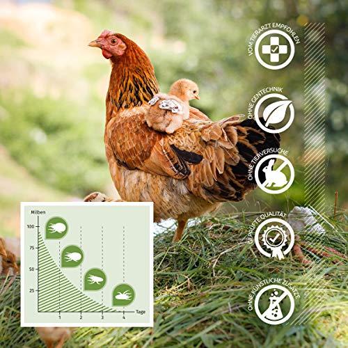 AniForte Milben-Stop Spray 1 Liter – Naturprodukt für Hühner - 3