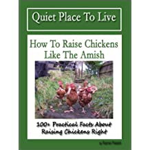 How To Raise Chickens Like The Amish (100+ Practical Facts About Raising Chickens Right) (English Edition)