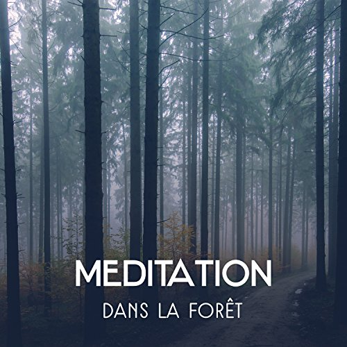 musique relaxation foret