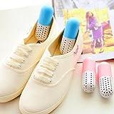 Best Odor Removers - Insasta 2PCS Shoe Deodorant Capsule Odor Smell Remover Review