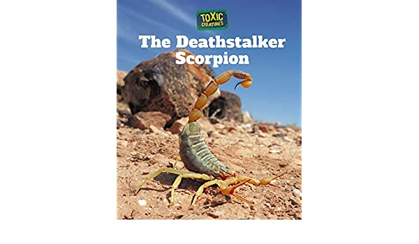 The Deathstalker Scorpion (Toxic Creatures): Amazon co uk