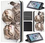 CoverFix Premium Hülle für Samsung Galaxy S5 Mini G800 Flip Cover Schutzhülle Kunstleder Flip Case Motiv (1328 Katzenbabys Kätzchen Katzen Tier süß)