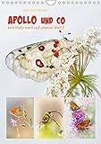 APOLLO UND CO (Wandkalender 2020 DIN A4 hoch): Herrliche Insekten. Kommt die Rettung zu spät? (Monatskalender, 14 Seiten ) (CALVENDO Tiere) -