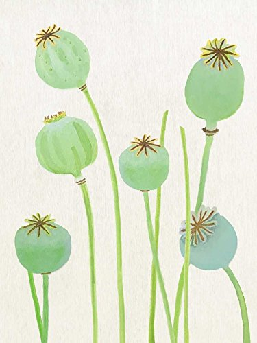 The Poster Corp India and Purry - Poppy Pods on Ecru Kunstdruck (22,86 x 30,48 cm) - Poppy Pods