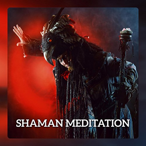 Shaman Meditation - Meet Your Inner Shaman and Animal Totem, Deep Trance Meditation with Native American Flute & African Drums (Native American Animal Totems)