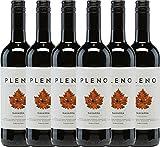 6er Paket - Pleno Tempranillo Tinto DO 2017 - Bodegas Agronavarra | trockener Rotwein | spanischer Wein aus Aragonien | 6 x 0,75 Liter