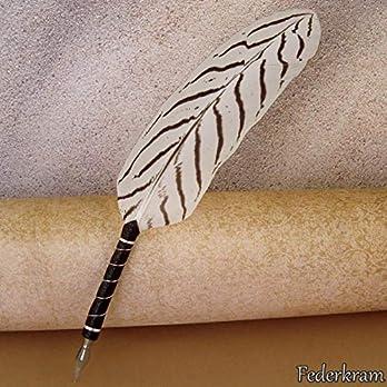 Schreibfeder Silberfasan weiß, Federkiel Vogel Stift Kalligraphie