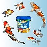 JBL 40199, Hauptfutter für alle Teichfische, Futterflocken PondFlakes, 1er Pack (1 x 10.5 l) - 3