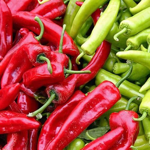 Pinkdose New Mexico - Anaheim Chili Pepper Samen Seed