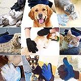GOLDSTA Fellpflegehandschuh für Katzen Hunde | Fellhandschuh-Pflegehandschuhe | Katzenhandschuh | Katzenbürste inkl. Postkarte mit Katzenmotiv  Geschenkverpackung verfügbar  - 9