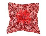 HSHIA Männer Frauen Bandana 100% Baumwolle Paisley Muster Kopftuch Hals Schals Handgelenk Wrap Biker Halstuch(rote)