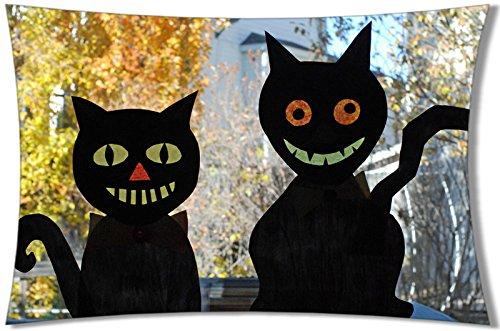 decemberloo Creative Katze Kissenbezüge Baumwolle Überwurf Kissenbezügen, 50,8x 76,2cm, color 11, 20x30inch