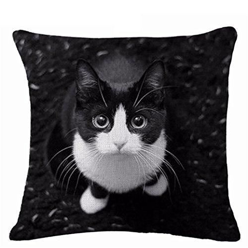 display08Lovely diseño de gatos funda de almohada cojín manta para casa sofá decoración, Lino, 8#, 17.72' x 17.72'