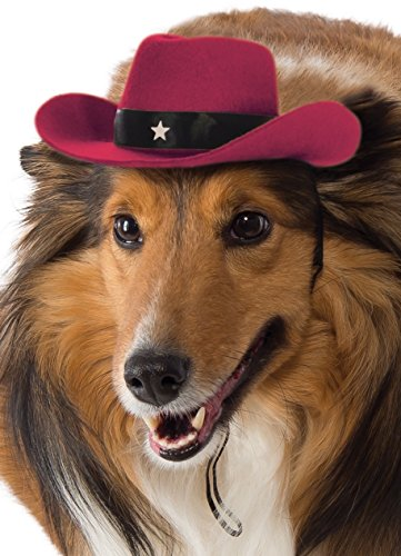 Kostüm Red Hat - Rubies Costume Red Cowboy Hat Hund Kostüm