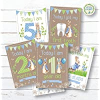 Personal Moments Peter Rabbit Baby Milestone Cards • Baby Shower Milestone Cards Gift • Baby Keepsake Milestone Cards • Beatrix Potter Memory Milestone Cards