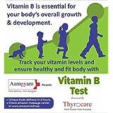ThyrocareWellness Vitamin B12 Test