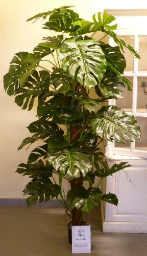 knstlicher-philodendron-split-sancho-110-bltter-120-cm-kunstbaum-dekobaum-artplants