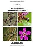Naturfotografie mit Superzoom-Bridgekameras: Die Mini-Riesen in der naturfotografischen Praxis