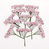 144pcs Mini Roses en Papier Fleurs Artificielles pour Mariage Artisanat - Rose