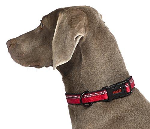HALTI Premium Reflective Dog Collar, Medium, Red